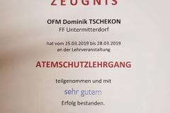 Dominik Urkunde